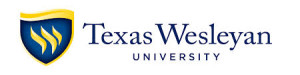 texas wesleyan computer training logo